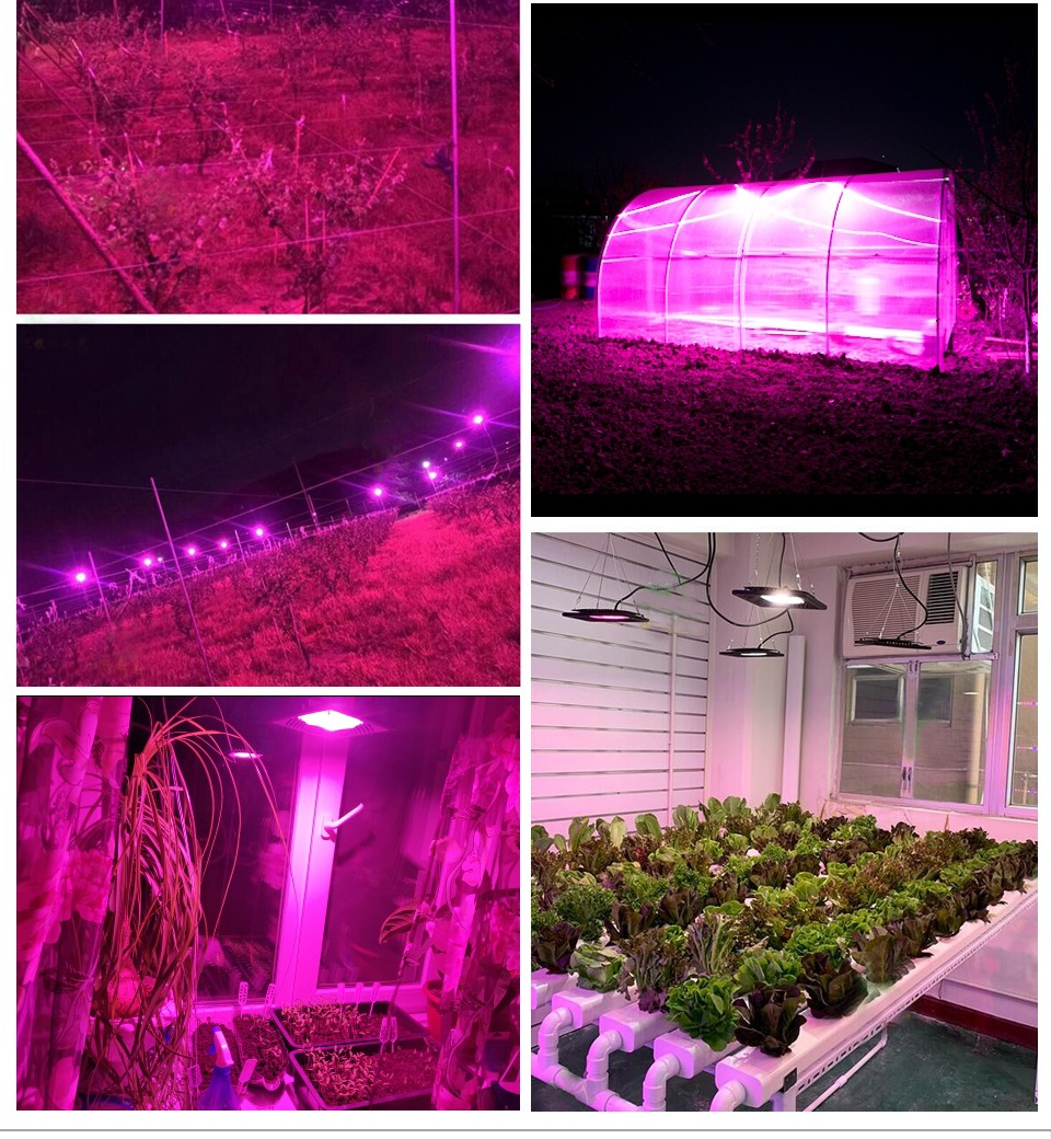 grow light mars
