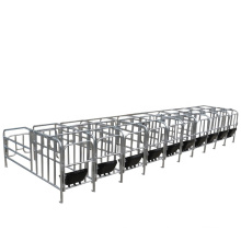 Pig Breeding Equipment galvanized Pig Sows Pregnant Gestation Stalls Crates For Sale