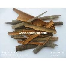 cinnamon/cassia broken factory
