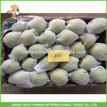 Preço baixo Fresh Shandong Pear
