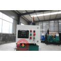 natürliche Methan / Biomasse Gas / Biogas Generator Preise