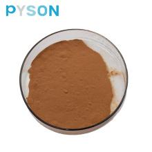 Bockshornkleesamen-Extrakt Pulver