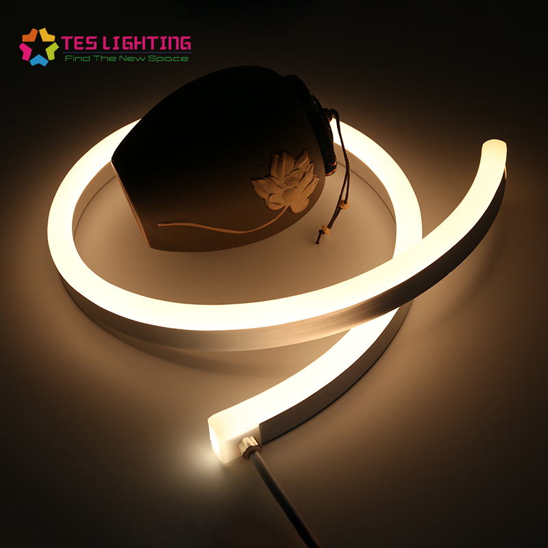 IP68 Flexible DC24V LED Strip Neon Light