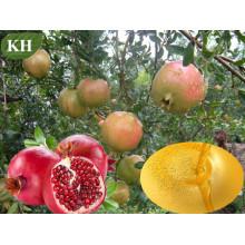 Aceite vegetal cosméticamente fresco del 100% / aceite de semilla de granada (CAS No.: 84961-57-9)