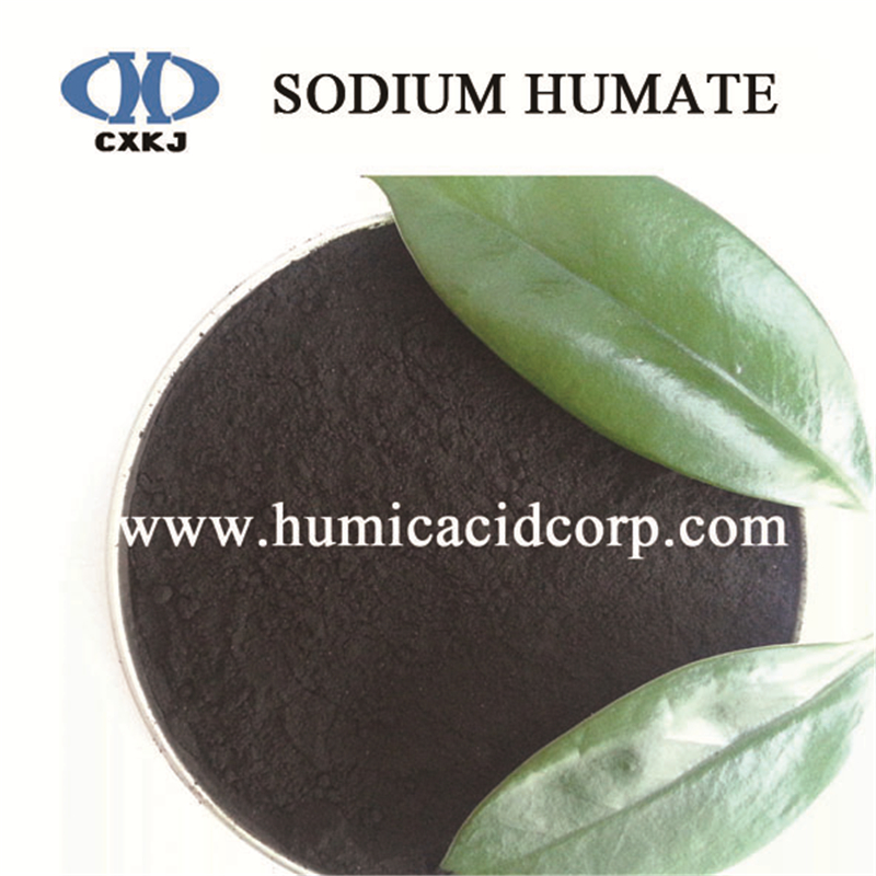 Sodium Humate powder