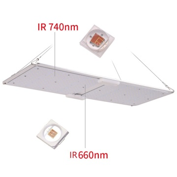 Bedste LED Grow Light UK 220W