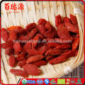 Health benefits of goji berries pianta goji goji benefits