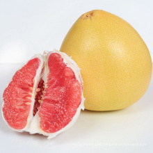2021 Hot Selling New Yummy Shaddock Fresh Fruit Red Pomelo With Low Price