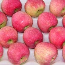 Dubai fruchtmarktpreise apfel