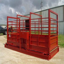 Animal Scale 2t for pig/cattle