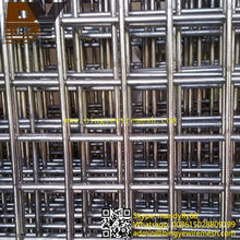 Stainless Steel Welded Wire Mesh for Rabbit Cage