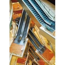 Fabrication d'escalier, prix d'escalier, trottoir passager de technologie japonaise