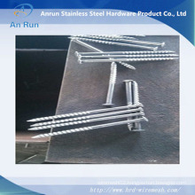 Hot Dipped Galvanized Roofing Nails Screw+ Washer