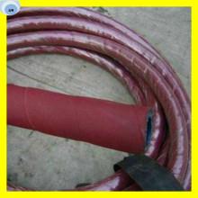 Manguera flexible de vapor de agua