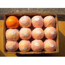 Suco Pulverizado De Fruta De Fruta De Sumo De Bebida De 250ml