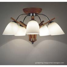Glass Lampshade Wood Hanging Lighting (N-059C-5)