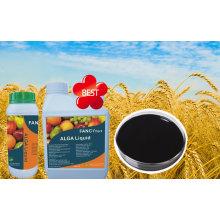 100% Organicseaweed Fertilizer Powder State/Liquid Seaweed Fertilizer
