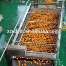 Commercial cashew apple juice making line