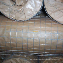 High quality welded wire mesh fence panels in 6 gauge