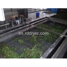 Multi Pass Belt Drying Machinery