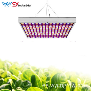 Best Grow Lights Panel de cultivo de espectro completo de 45 W