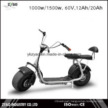 Fashion 1000W Brushless Adult Electric Scooter Citycoco 2 Seats
