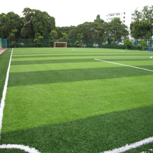 Synthetic Lawn for Soccer