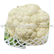 chinese fresh white cauliflower