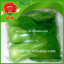 Pakchoi col repollo congelado Productos vegetales de alta calidad a la venta