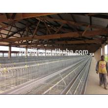 Projeto de casa de frango para gaiola de frango (5000, 10000, 15000, 20000 camadas)
