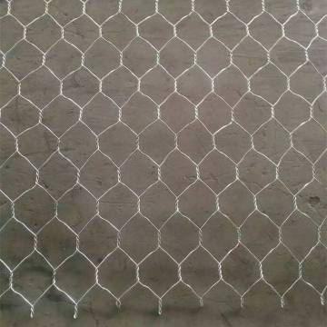 malla de pollo hexagonal de la red de alambre del acero inoxidable