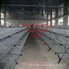 Gaiola de aço industrial da gaiola das aves domésticas da gaiola do coelho