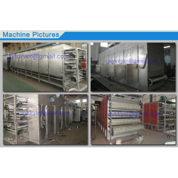 Multi Layer Conveyor Belt Dryer