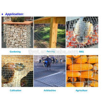 pvc/ stainless steel/ galvanized welded wire mesh