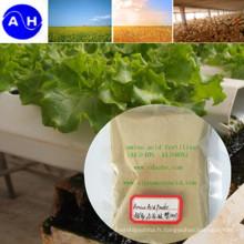 Composé d'acides aminés de source végétale 40% 45% de contenu contiennent du chlorure