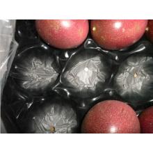 Termoformado Blister Perforado Exportado Embalaje Bandeja de Frutas Plásticas para Fruta de Piedra Fresca Hecho en China
