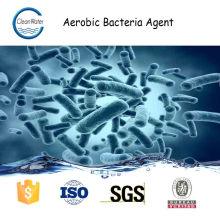 AGENTE DE BACTERIAS AEROBICAS para tratamiento de aguas residuales n1