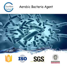 AEROBIC BACTERIA AGENT for wastewater treatment n1