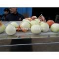 2016 Hot sale onion peeling machine
