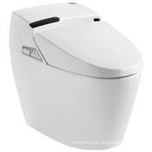 Cuarto de baño inteligente de alta Quatity (JN30609)
