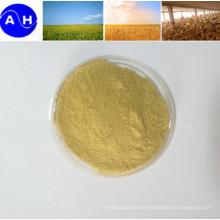 Poudre de composé d'acides aminés à base végétale sans chloridion