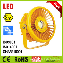 Atex Iecex High Power LED Explosion Proof Light