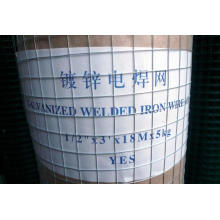 Galvanized Welded Mesh Roll Used in Construcion and Protection