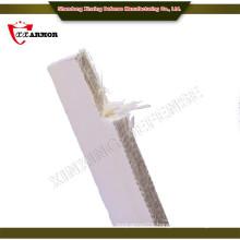 Against AK47 silicon carbide ballistic plate