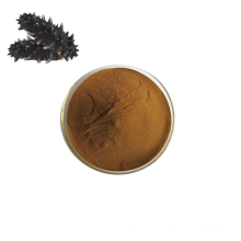 High Quality Pure Natural  Sea Cucumber Extract Sea Cucumber Polypeptide