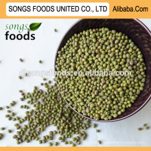 Peeled green mung beans buyer