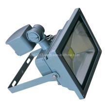 Proyector al aire libre impermeable del proyector de la luz impermeable de 30W RGB LED