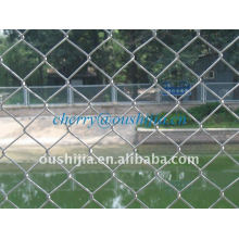 Chain Link Fence (factory&exporter)