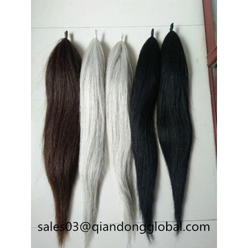 Falso Horse Tails