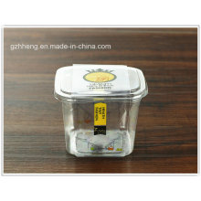 Custom Plastic PP Cookie/Pastries/candy/cake box (gift packaging tin)